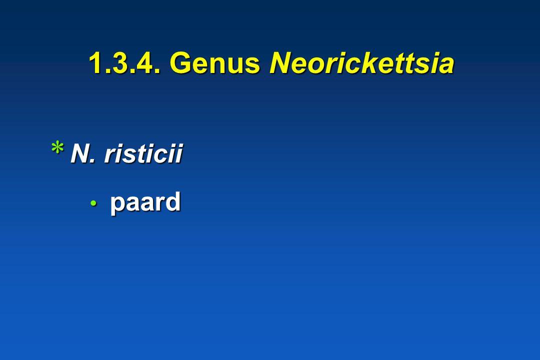 1.3.4. Genus Neorickettsia N. risticii paard