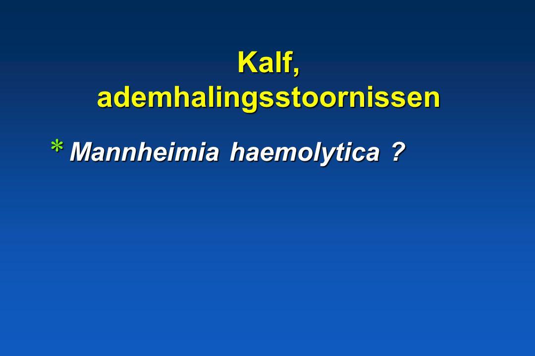 Kalf, ademhalingsstoornissen