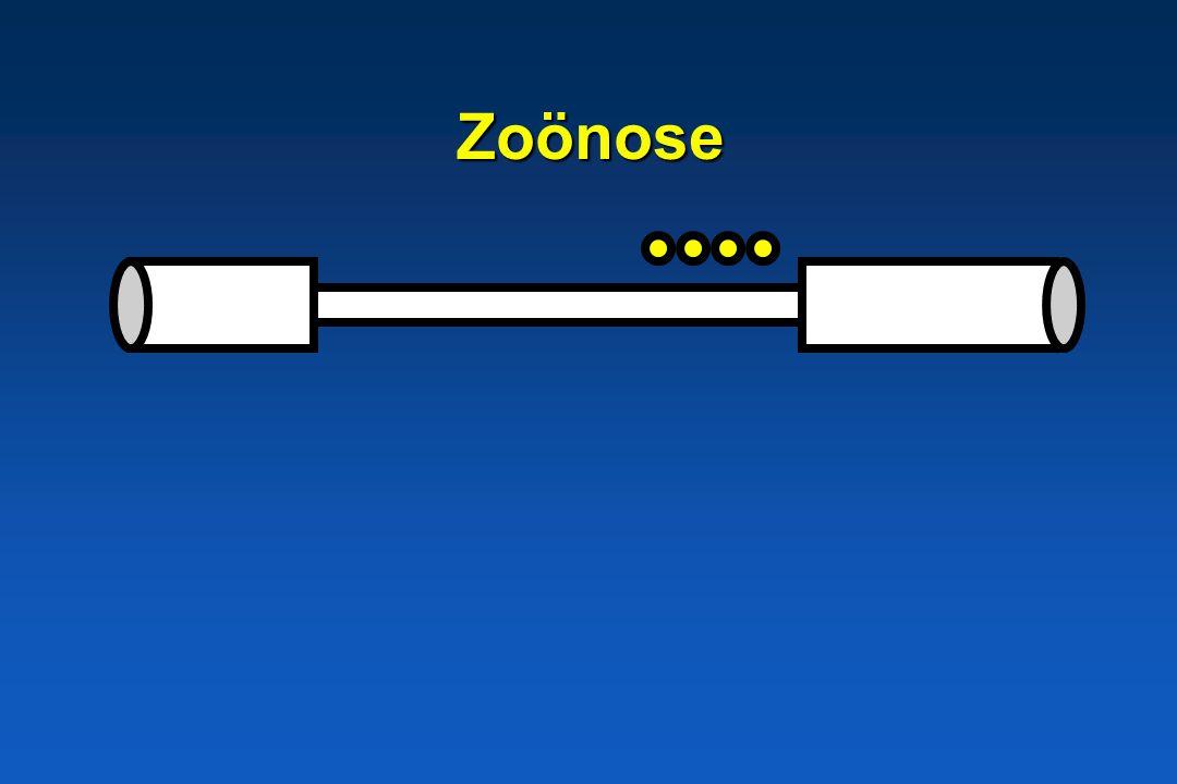 Zoönose