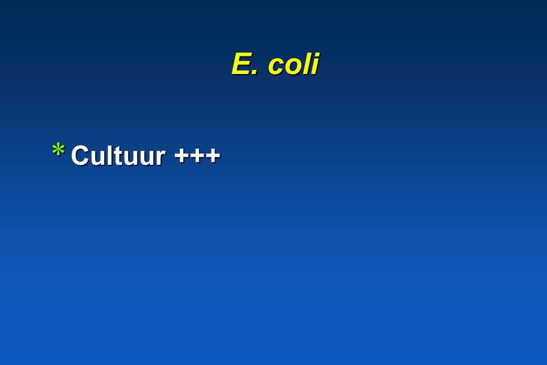 E. coli Cultuur +++