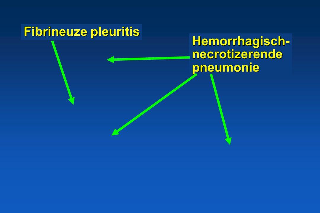 Fibrineuze pleuritis Hemorrhagisch- necrotizerende pneumonie