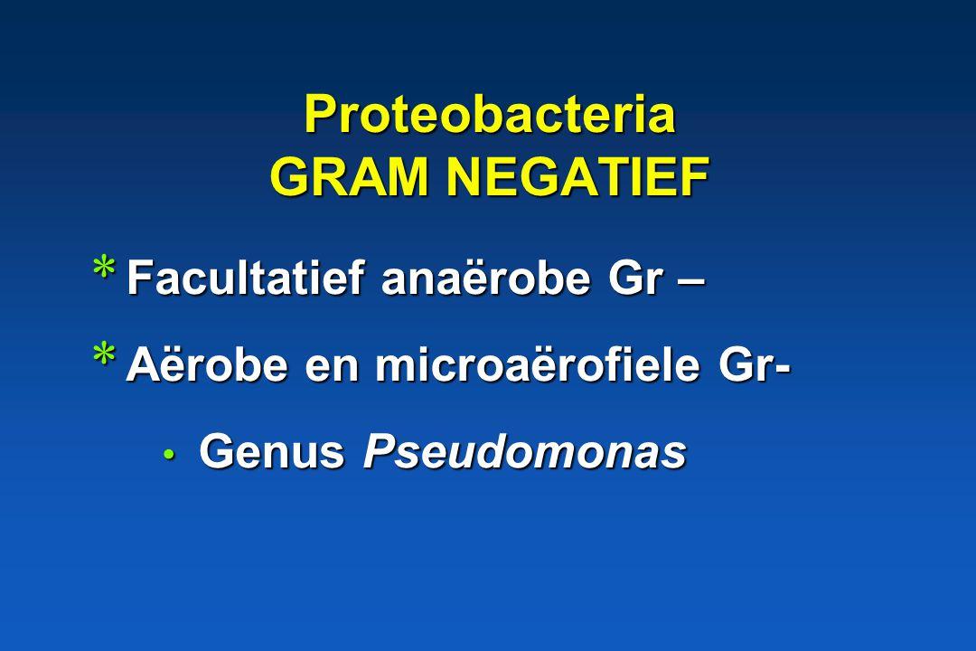 Proteobacteria GRAM NEGATIEF