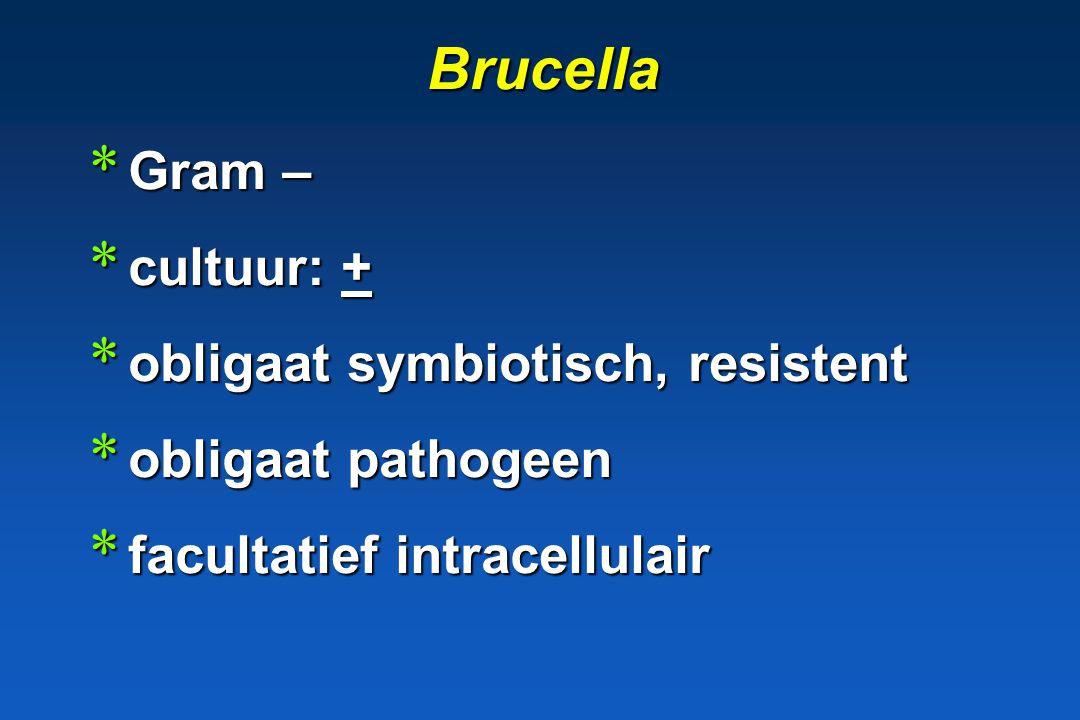 Brucella Gram – cultuur: + obligaat symbiotisch, resistent