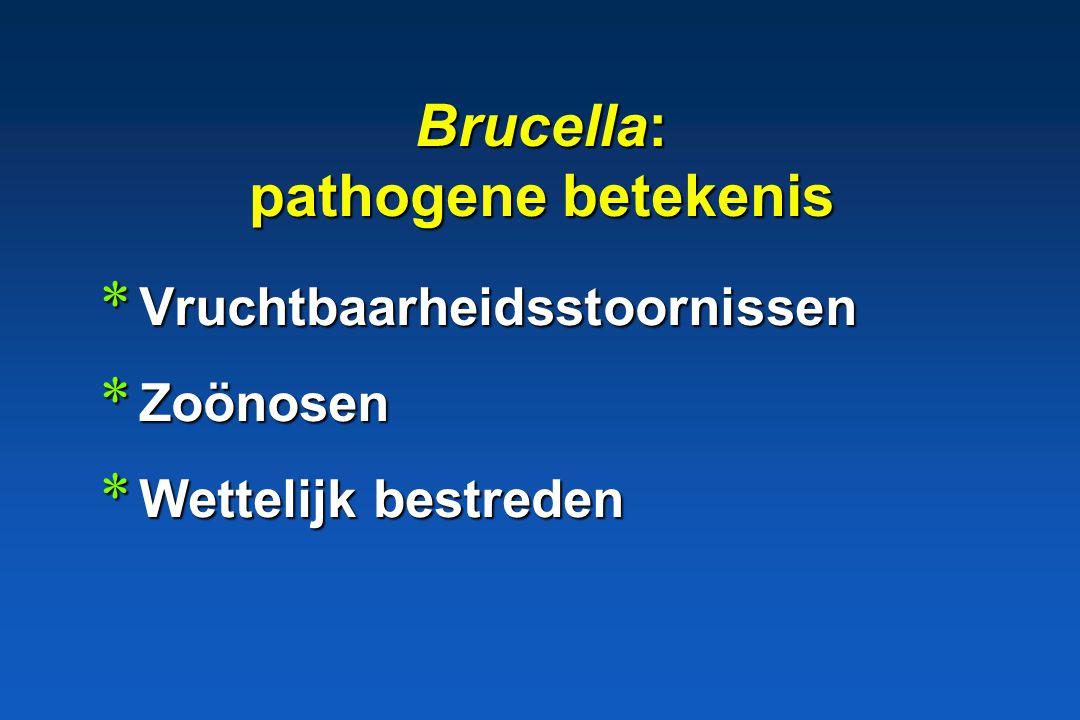 Brucella: pathogene betekenis