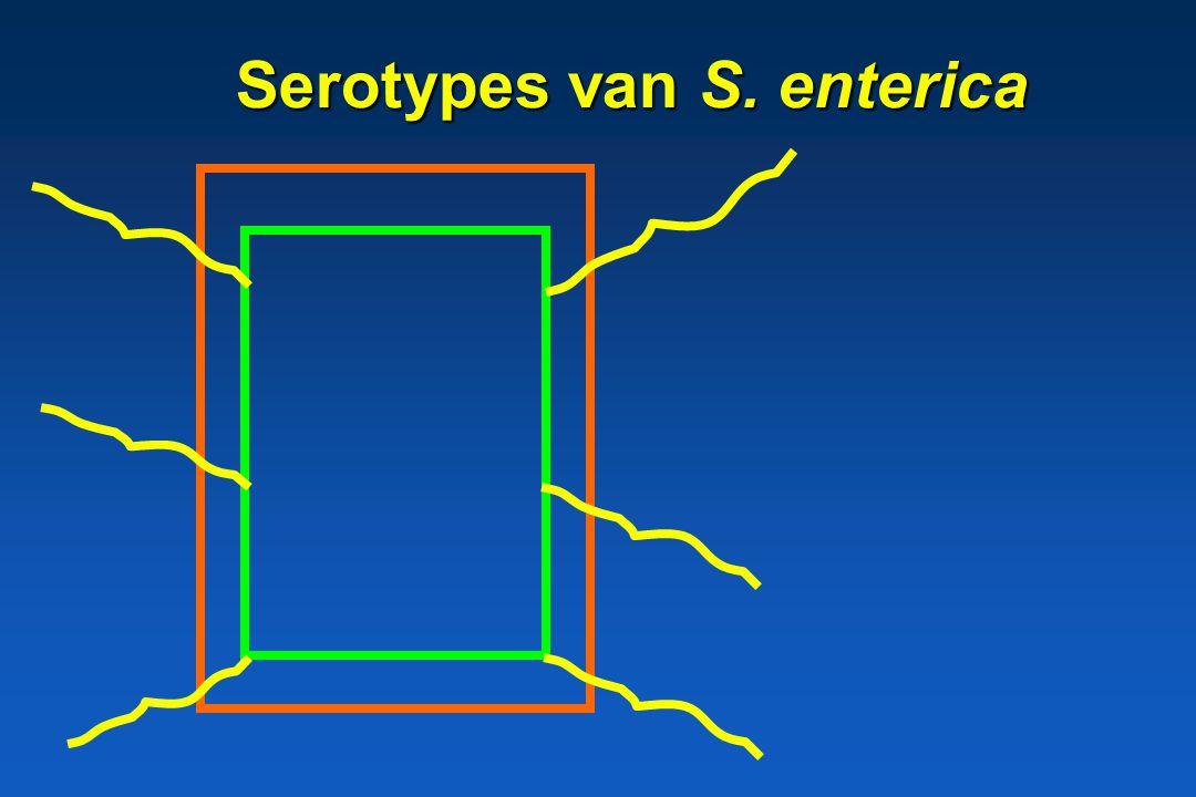 Serotypes van S. enterica