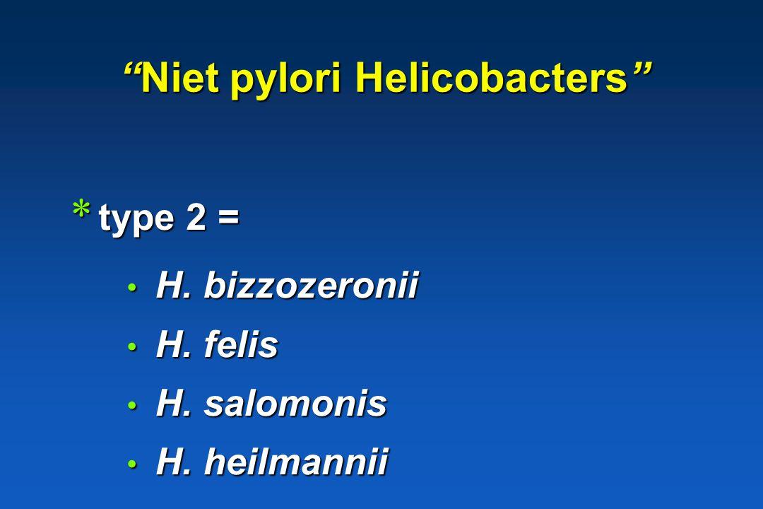 Niet pylori Helicobacters