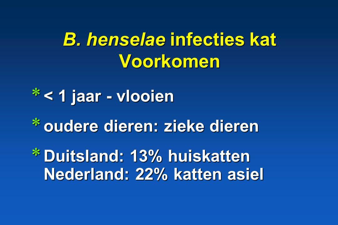 B. henselae infecties kat Voorkomen