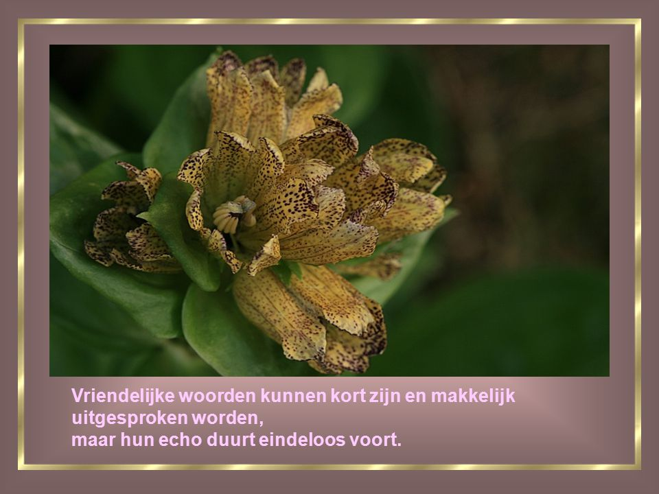 Vriendelijke woorden kunnen kort zijn en makkelijk uitgesproken worden, maar hun echo duurt eindeloos voort.