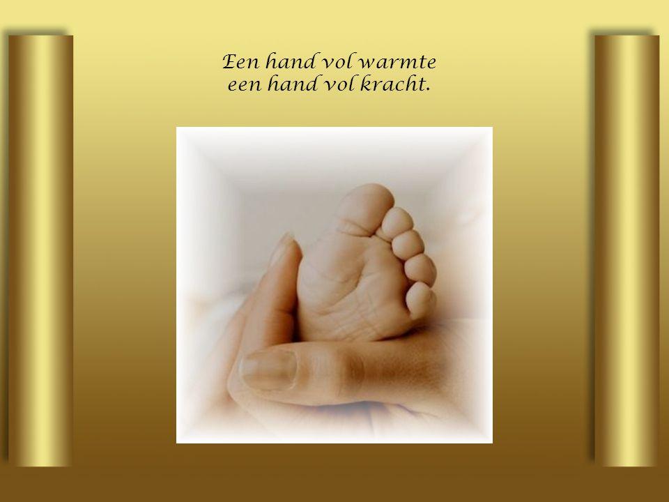 Een hand vol warmte een hand vol kracht.