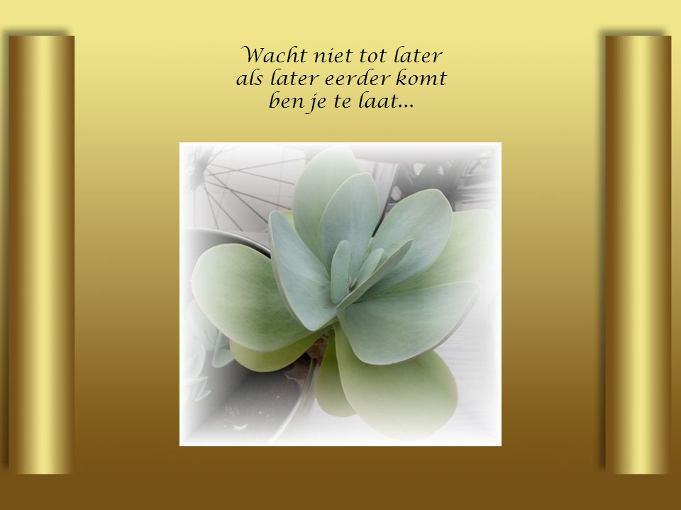 Wacht niet tot later als later eerder komt ben je te laat...
