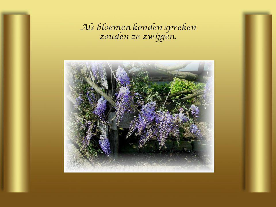 Als bloemen konden spreken zouden ze zwijgen.
