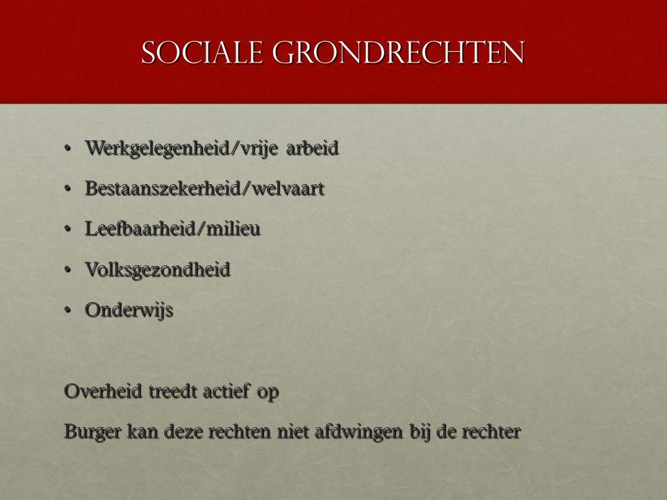 Sociale grondrechten Werkgelegenheid/vrije arbeid