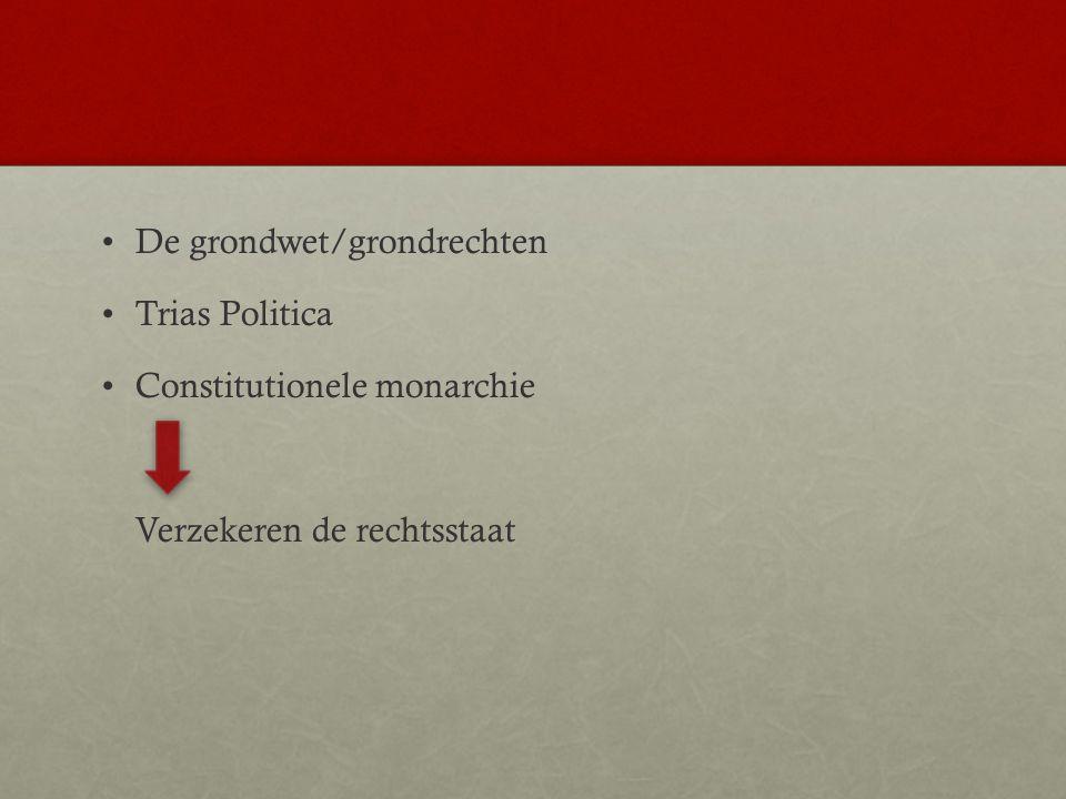 De grondwet/grondrechten