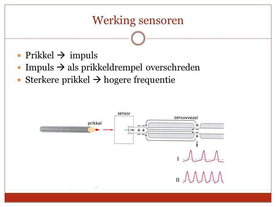Werking sensoren Prikkel  impuls