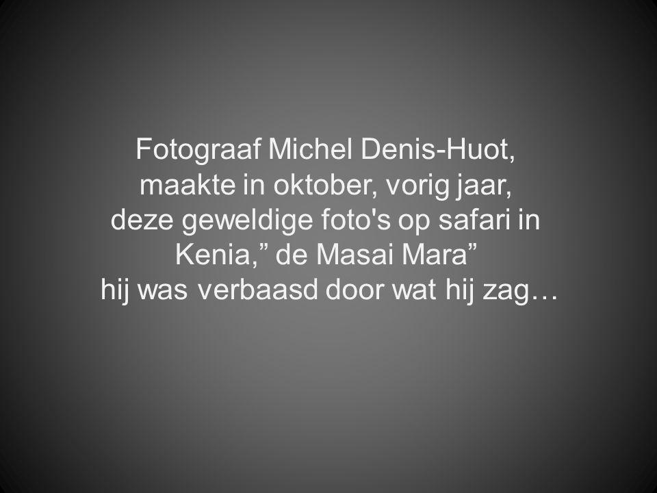 Fotograaf Michel Denis-Huot, maakte in oktober, vorig jaar,