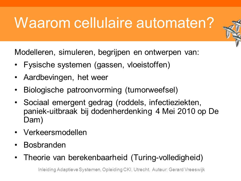 Waarom cellulaire automaten
