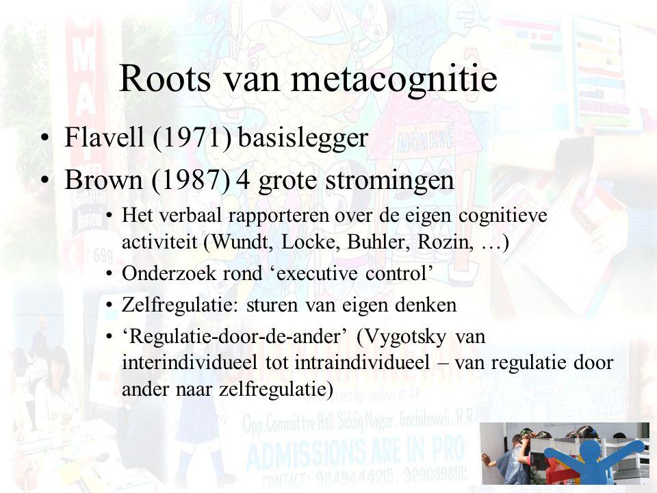 Roots van metacognitie