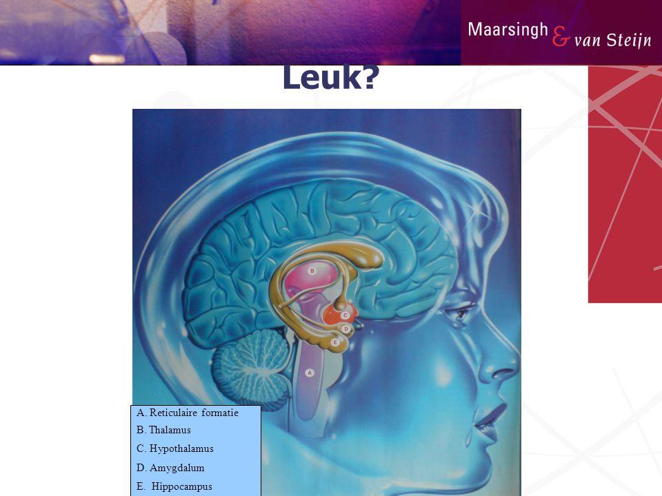 Leuk A. Reticulaire formatie B. Thalamus C. Hypothalamus D. Amygdalum