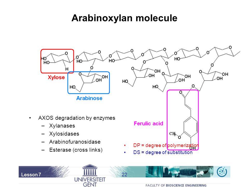 Arabinoxylan molecule