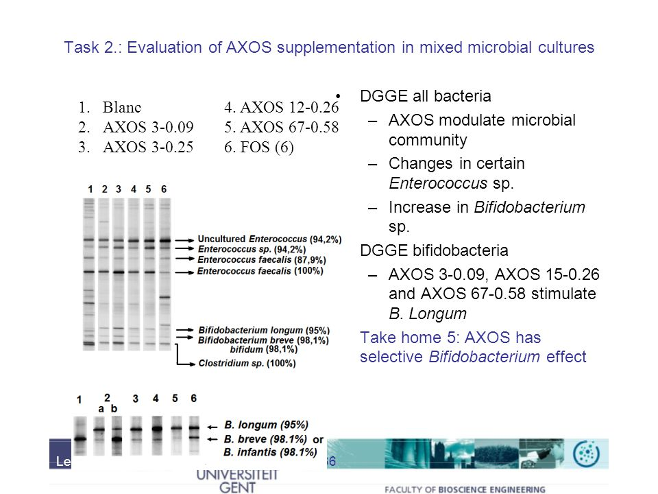 AXOS modulate microbial community Changes in certain Enterococcus sp.