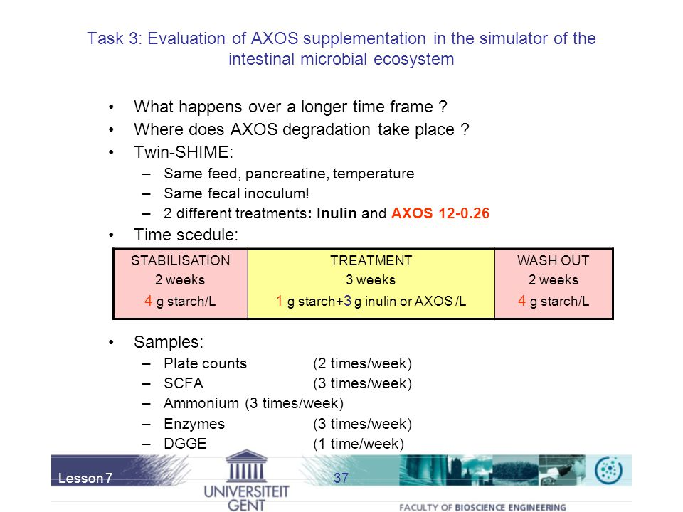 1 g starch+3 g inulin or AXOS /L