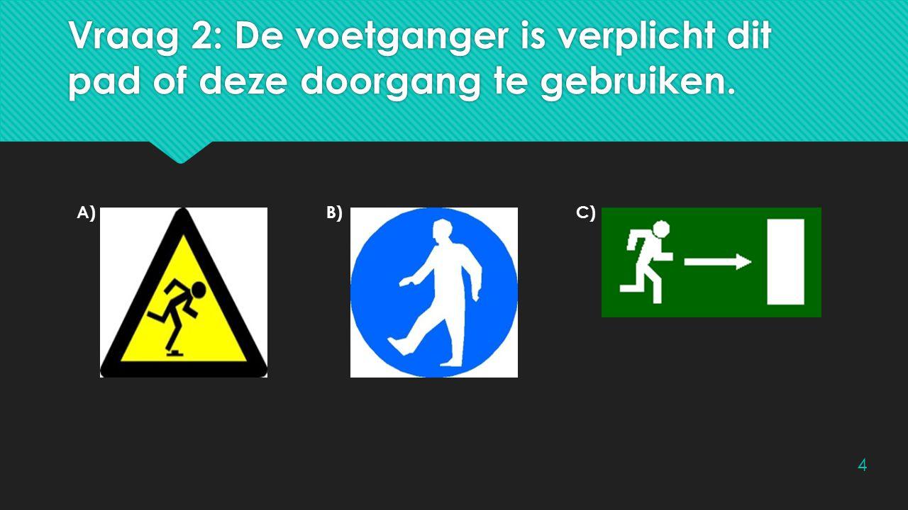Vraag 2: De voetganger is verplicht dit pad of deze doorgang te gebruiken.
