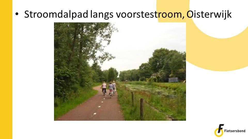 Stroomdalpad langs voorstestroom, Oisterwijk