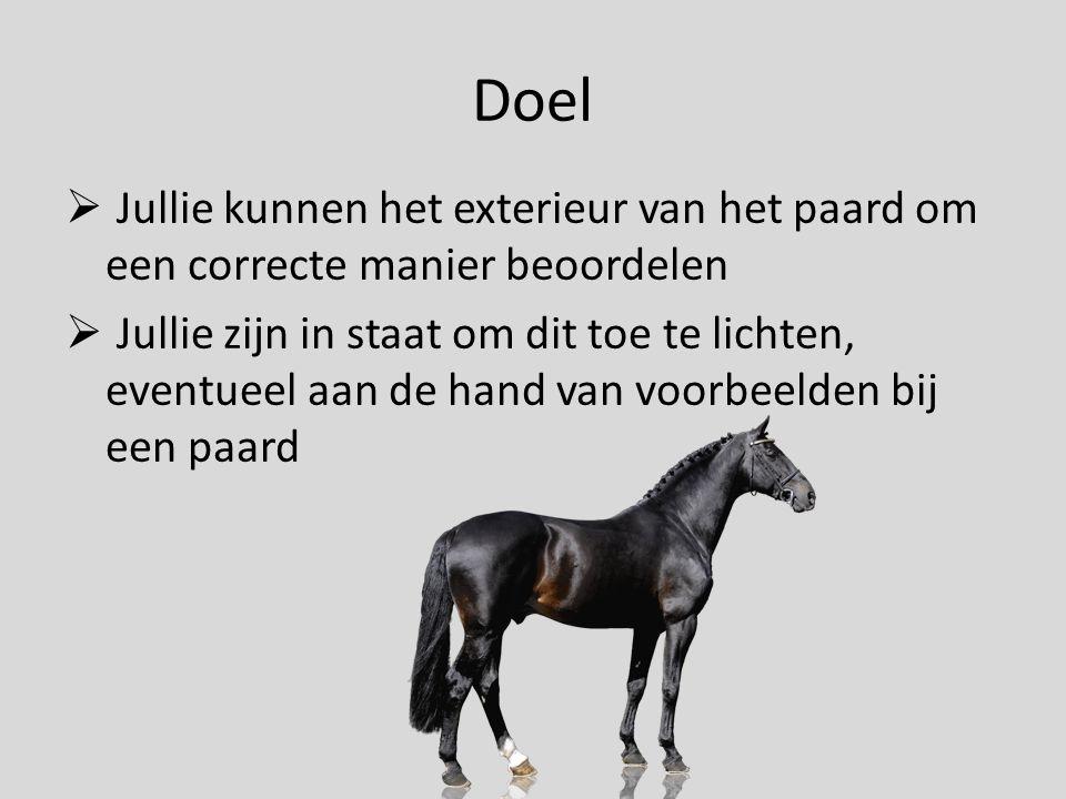 Doel Jullie kunnen het exterieur van het paard om een correcte manier beoordelen.