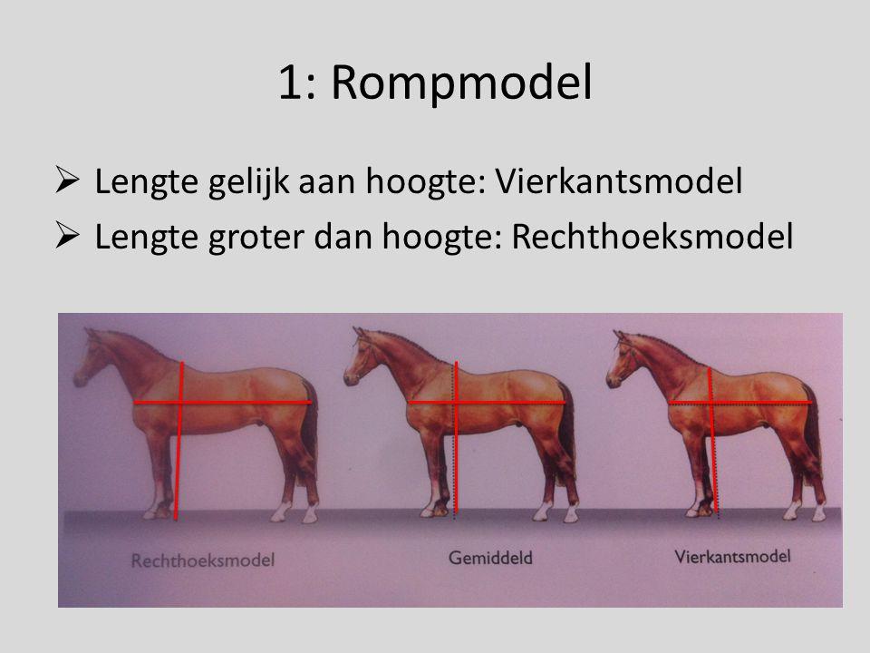 1: Rompmodel Lengte gelijk aan hoogte: Vierkantsmodel