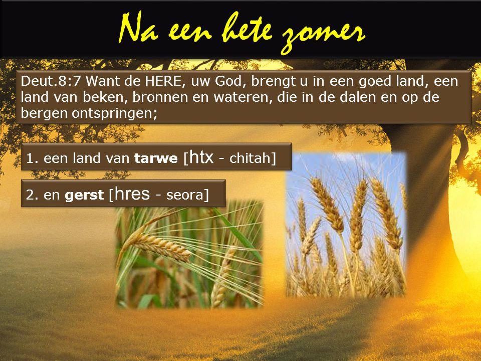 Deut.8:7 Want de HERE, uw God, brengt u in een goed land, een land van beken, bronnen en wateren, die in de dalen en op de bergen ontspringen;
