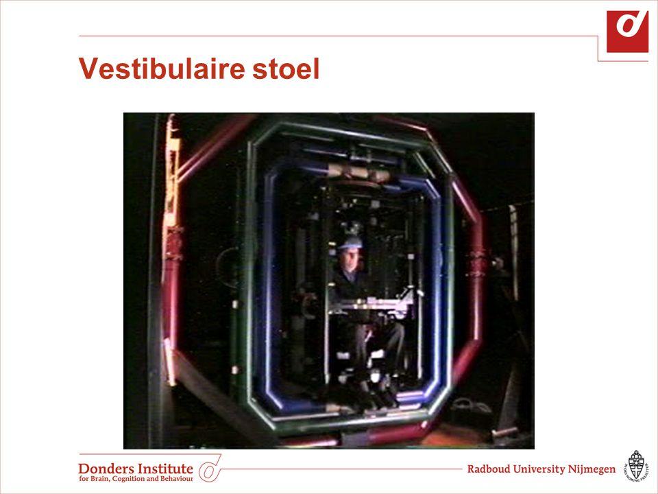 Vestibulaire stoel