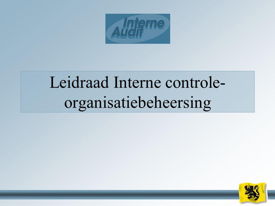 Leidraad Interne controle-organisatiebeheersing