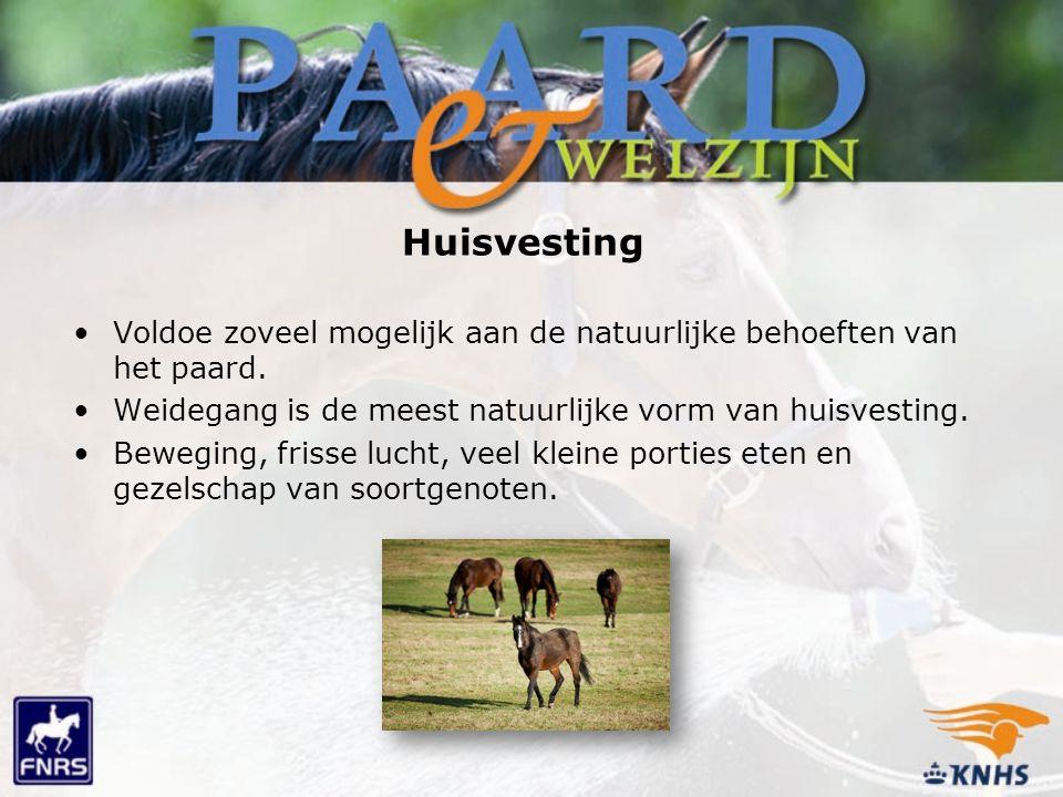 Huisvesting Voldoe zoveel mogelijk aan de natuurlijke behoeften van het paard. Weidegang is de meest natuurlijke vorm van huisvesting.