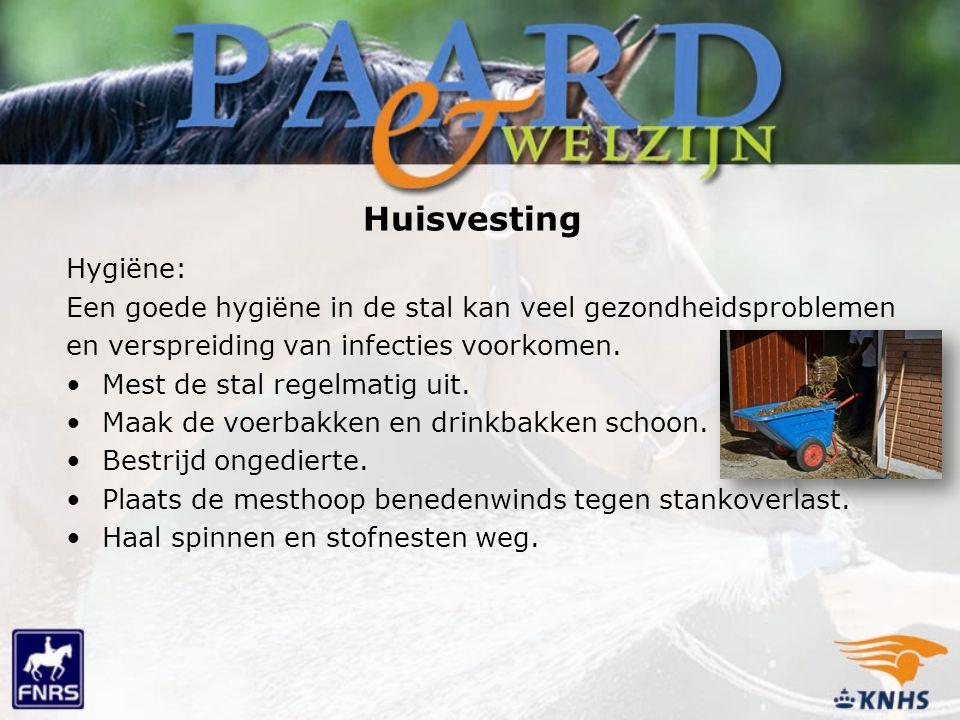 Huisvesting Hygiëne: Een goede hygiëne in de stal kan veel gezondheidsproblemen. en verspreiding van infecties voorkomen.
