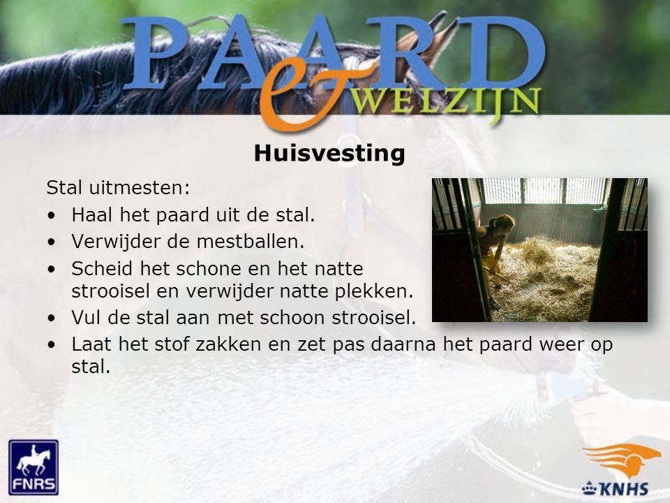 Huisvesting Stal uitmesten: Haal het paard uit de stal.