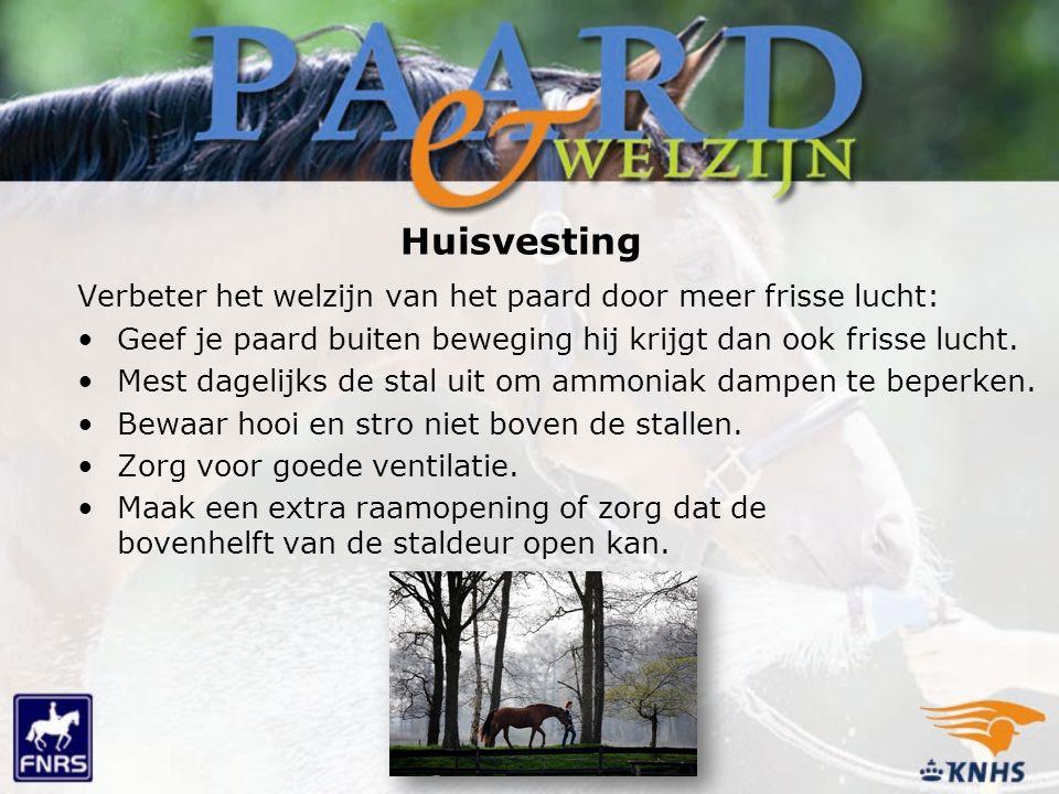 Huisvesting Verbeter het welzijn van het paard door meer frisse lucht: