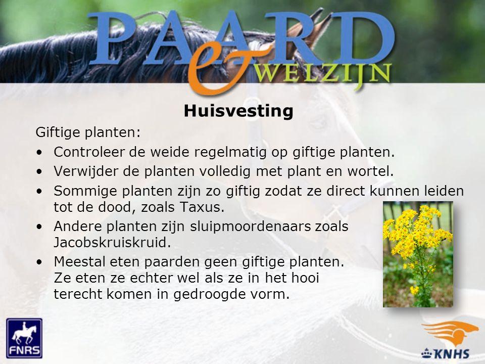 Huisvesting Giftige planten: