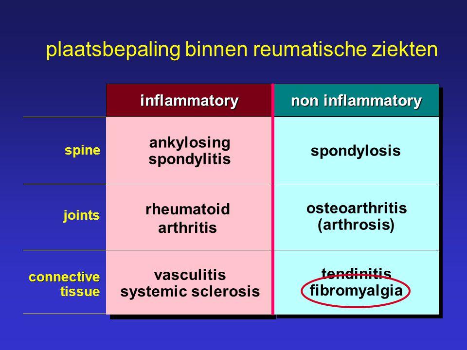 plaatsbepaling binnen reumatische ziekten