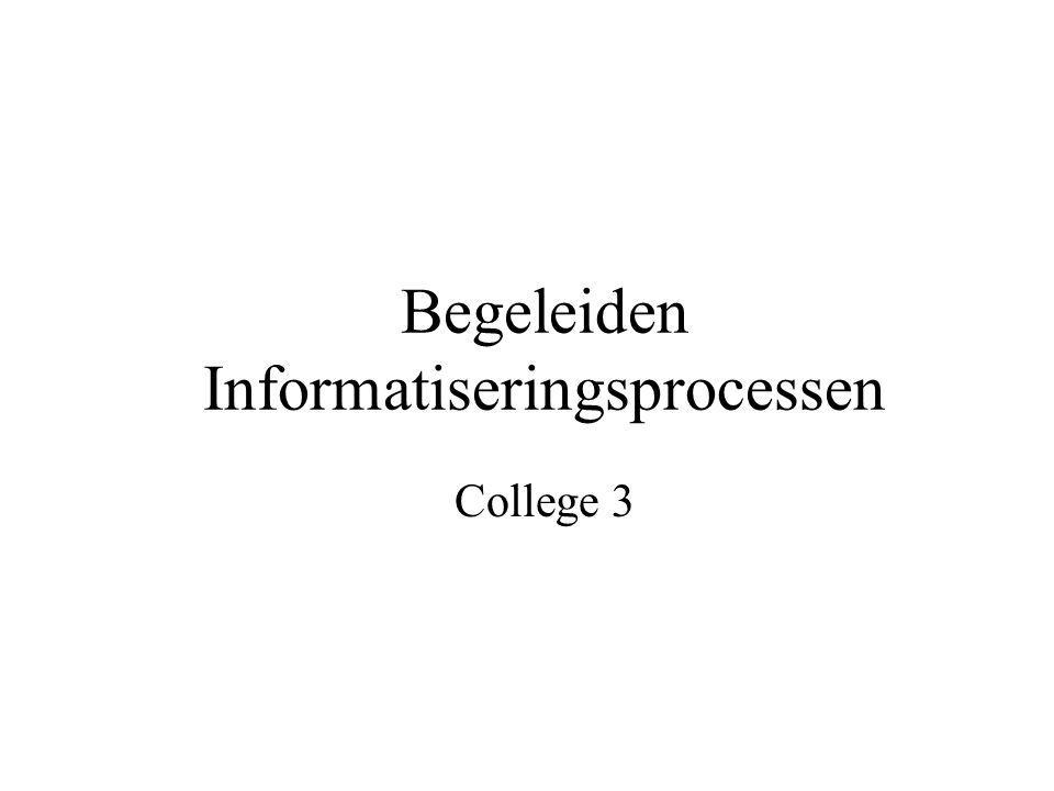 Begeleiden Informatiseringsprocessen