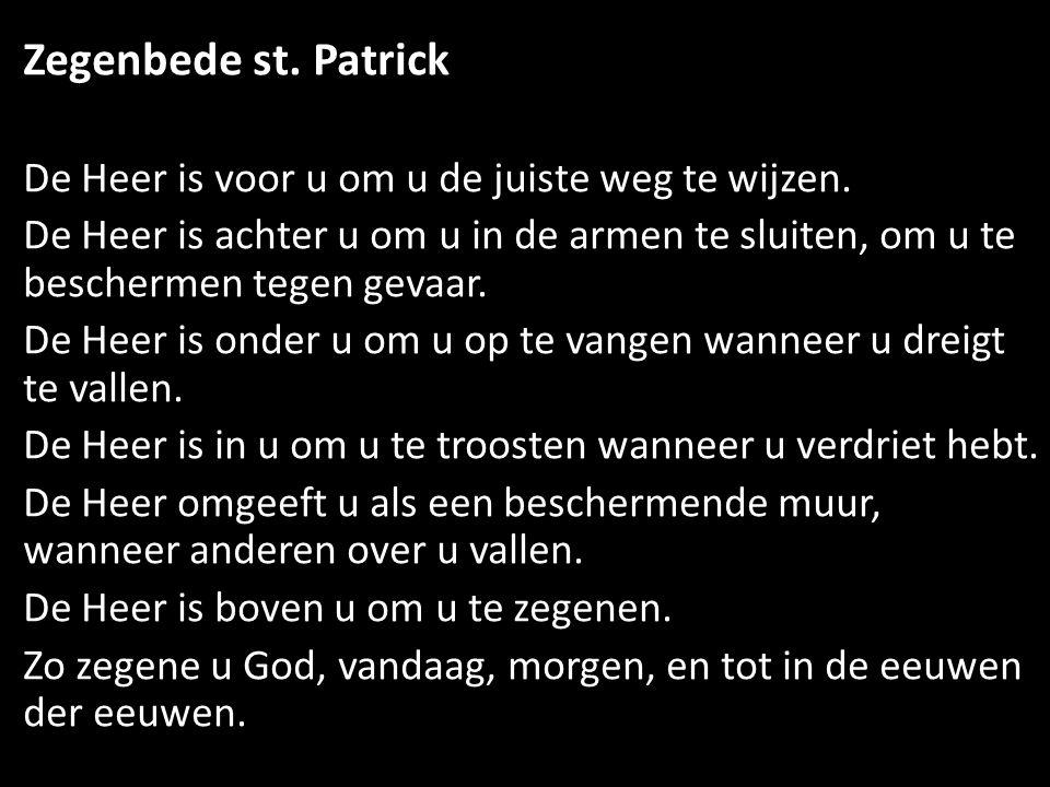 Zegenbede st. Patrick De Heer is voor u om u de juiste weg te wijzen.