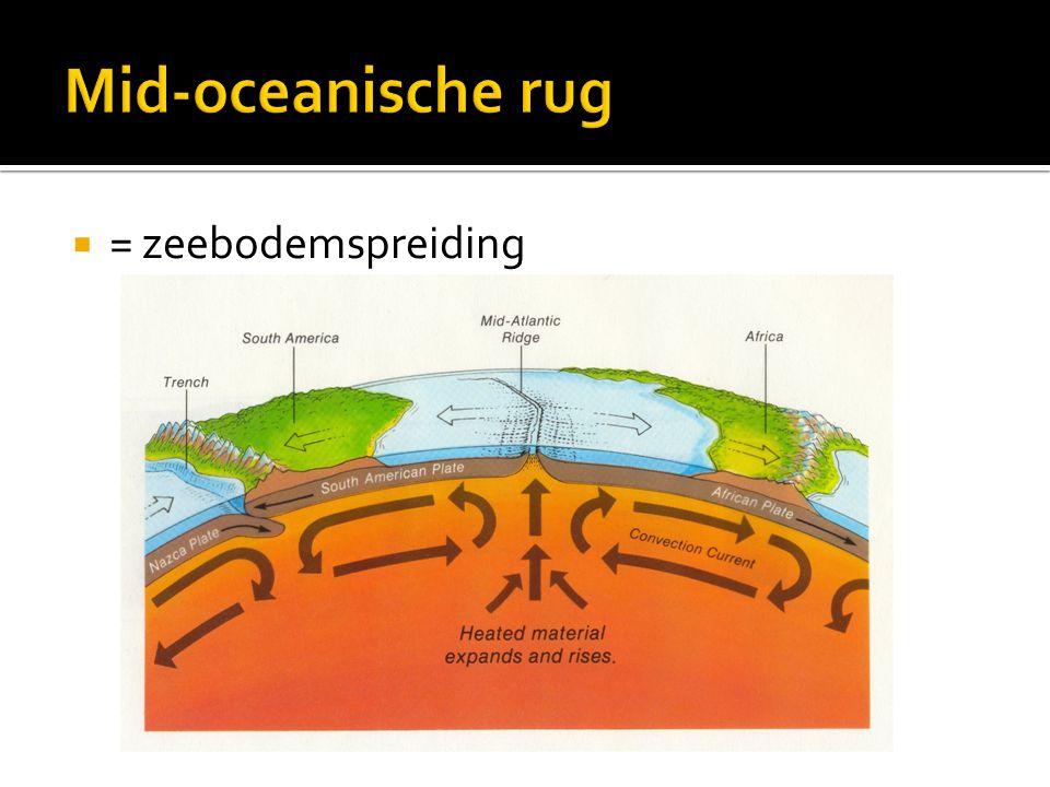 Mid-oceanische rug = zeebodemspreiding