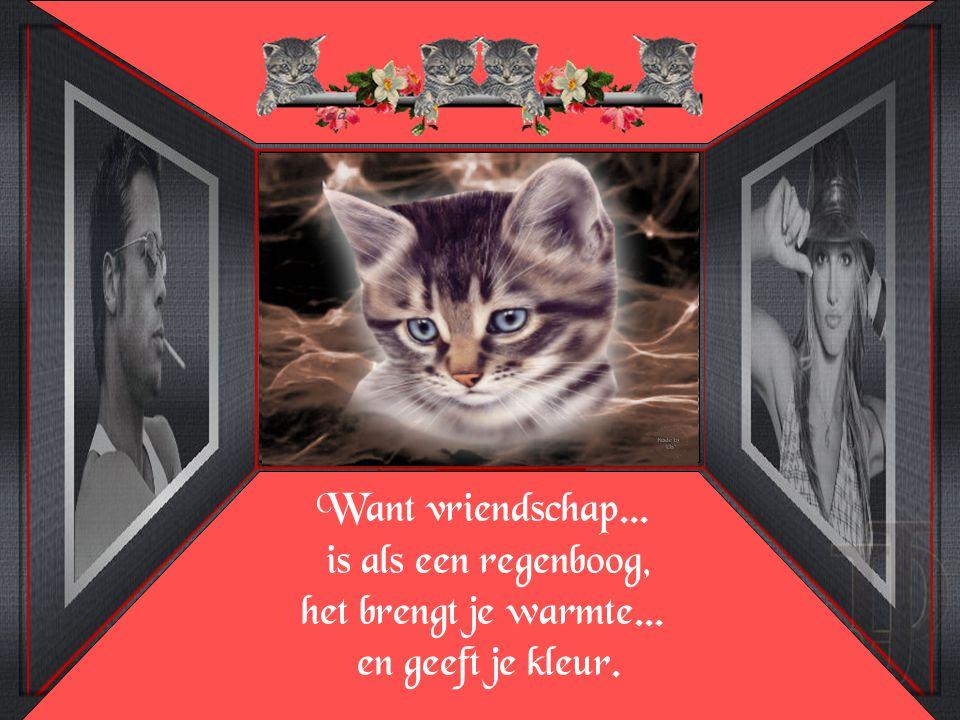 Want vriendschap. is als een regenboog, het brengt je warmte