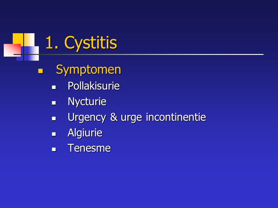 1. Cystitis Symptomen Pollakisurie Nycturie