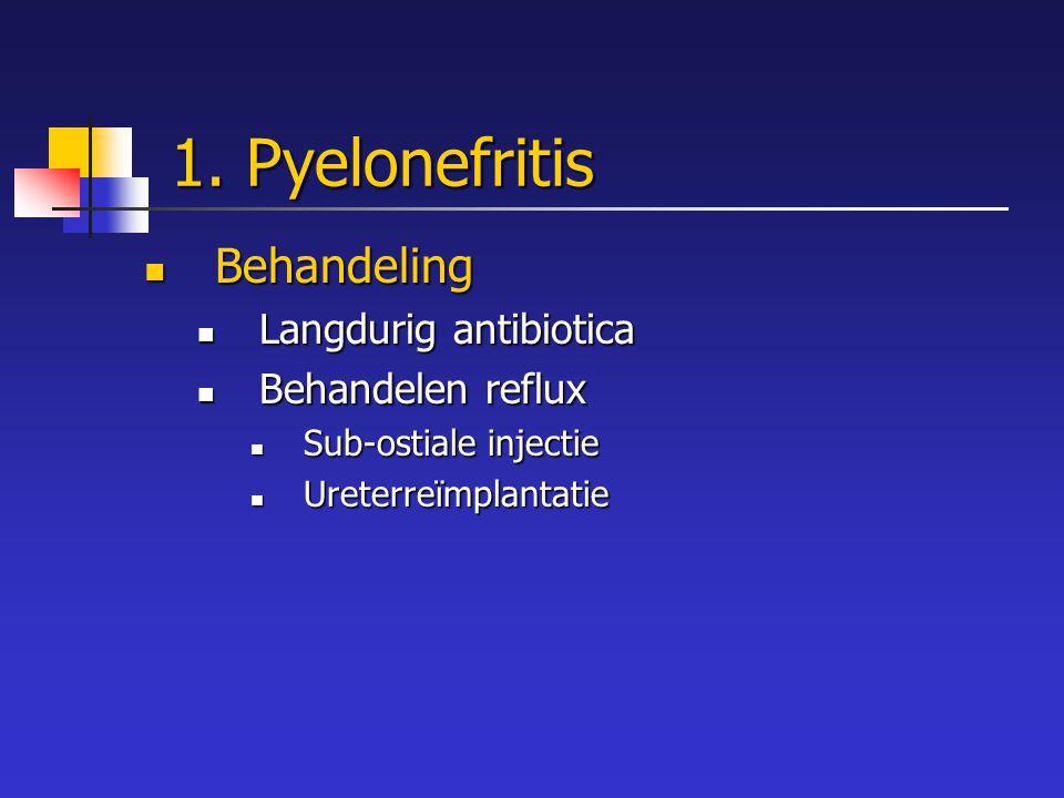 1. Pyelonefritis Behandeling Langdurig antibiotica Behandelen reflux