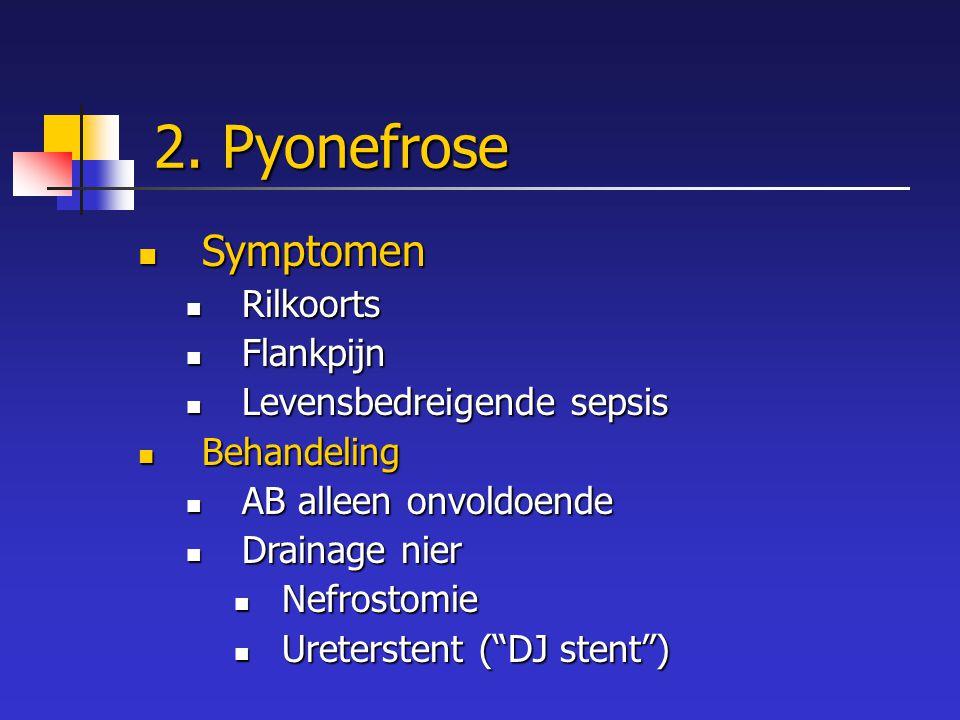 2. Pyonefrose Symptomen Rilkoorts Flankpijn Levensbedreigende sepsis