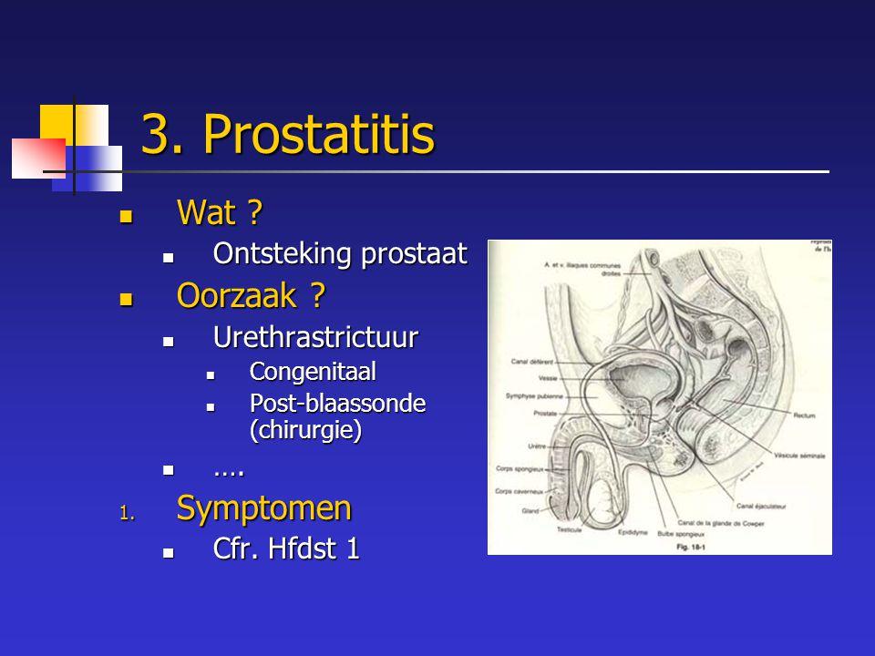3. Prostatitis Wat Oorzaak Symptomen Ontsteking prostaat