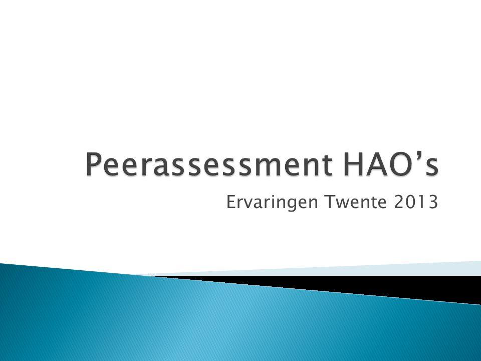Peerassessment HAO's Ervaringen Twente 2013