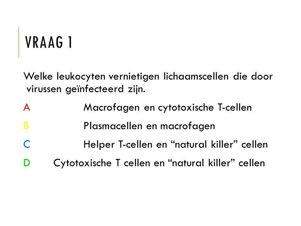 Vraag 1 Welke leukocyten vernietigen lichaamscellen die door virussen geïnfecteerd zijn. A Macrofagen en cytotoxische T-cellen.