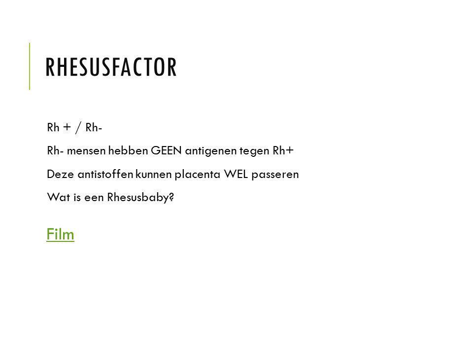Rhesusfactor Film Rh + / Rh-