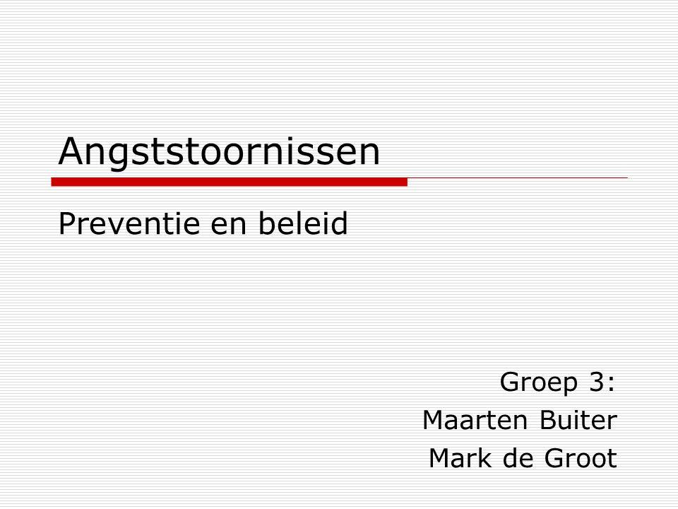 Groep 3: Maarten Buiter Mark de Groot